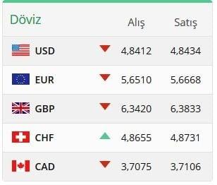 Doviz.com - Euro Değeri